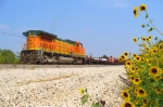 BNSF 504 worktrain